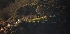 Yerba Buena Lighthouse Revisited (Stew_Bayarea) Tags: sunset grasslands treasureisland yerbabuena lighthouse bayarea scenic ferry solace tranquility lighting sonnenuntergang lecoucherdusoleil 日落 燈塔 phare leuchtturm 森林 美景 منارة غروبالشمس جمال