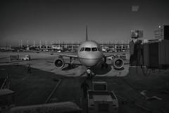 O'Hare International Airport (Jovan Jimenez) Tags: canon eos m3 efm 22mm f2 stm eosm3 pancake lens travel transportation plane bw black white gray monochromatic ohare international airport mono monochrome air port