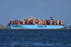 Maersk Edinburgh DST_1155 (larry_antwerp) Tags: maerskedinburgh maersk container rilland netherlands nederland zeeland schip ship vessel 船 船舶 אונייה जलयान 선박 کشتی سفينة schelde 斯海尔德河 スヘルデ川 스헬더 강 رود شلده سخيلده