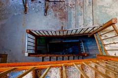 IMG_7362 (rafosho) Tags: newyork building nature collection yonkers bti lightroom boycethompsoninstitute rafosho