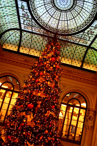 happy plaza hotel xmas displays