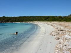 Baignade à Pisciu Cane : ouais, y'a pas de posidonies aux Seychelles... Et alors ?