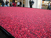 cranberries @ the hotel / shops