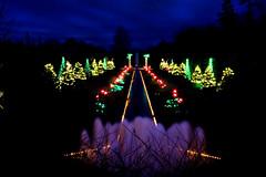 DSBG 12-30-2009 4 (G. H. Holt Photography) Tags: christmas longexposure night lights nc long exposure belmont northcarolina christmaslights danielstowebotanicalgardens nightphotograpghy dsbg ghholt 12302009 storybookwinner