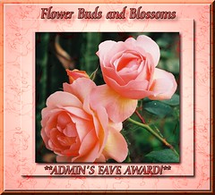 Flower Buds and Blossoms Admin Choice award