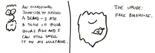 366 Cartoons - 330 - Beard