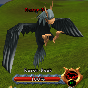 Anglorum / Quest / Harvesting the Razor Beaks 4252876053_6bb0466481_o