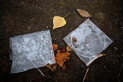 ... lost songs #2 ... (LordRayden) Tags: art lost photography songs masterpiece trashbit