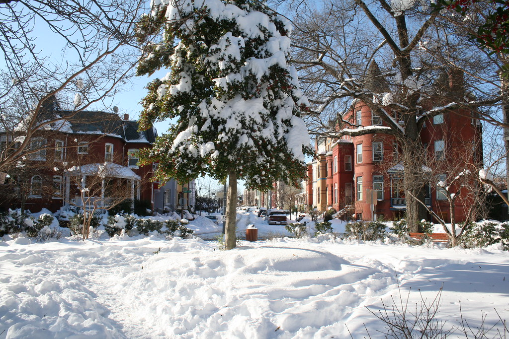 Cooper Circle under Snow