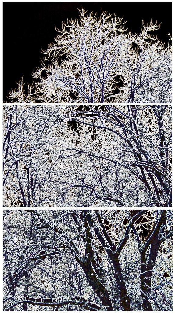 2010 janvier 13 - neige 011 - composition contours lumineux