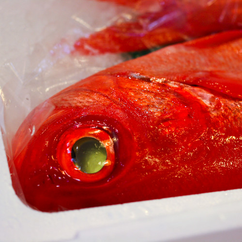 Fishhead III (by niklausberger)