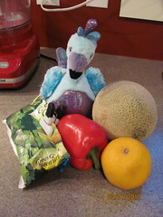 A stuffed Blufadoodle modelling some fruits and veggies