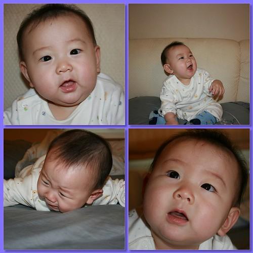 Luke 6 months