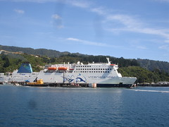 Interislander Ferry (Picton - Wellington) Photo