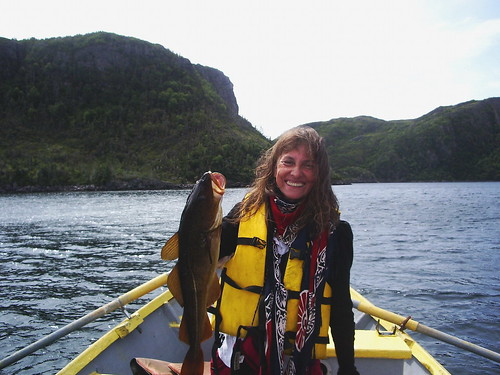 Cod fishing in Rencontre East, Newfoundland