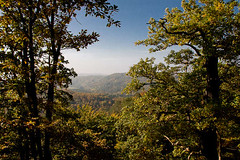 von der Sängerwiese auf den Thüringer Wald geblickt