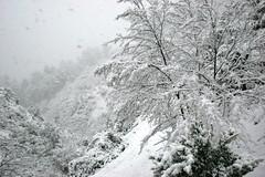 vallon neige