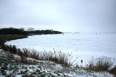 Frozen Gouwzee, the Netherlands (sensaos) Tags: schnee winter snow cold holland netherlands dutch sport zeilen europa europe sneeuw nederland tradition nederlands noordholland ijs noord the monnickendam traditie gouwzee ijszeilen