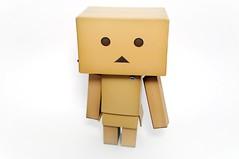 Simplicity (Sai / Rebecca) Tags: toy beige nikon kani revoltech d5000 danboard