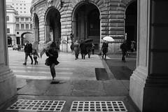 Zena (John Soqquadro) Tags: italy cold rain italia wind liguria genoa genova zena umbrellas pioggia freddo vento piazzadeferrari ombrelli