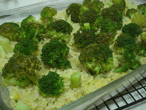 BakedBroccoliForest2