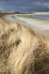 Traigh Losgaintir from Corran Sheileboist (David Kendal) Tags: s harris curve hebrides outerhebrides dunegrass marram hummocks scottishcoast sandyshore seilbost marramgrasses