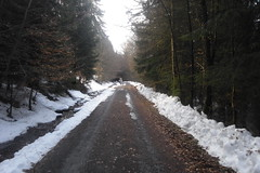 Anstieg Fuchstanz (karsten13) Tags: feldberg 27022010