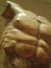 poseidon's torso