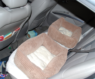 Our-Beds-in-the-car