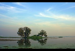 Life is like a mirror... [Explored] (D a r s h i) Tags: reflection water reflections reflect mirrored pune darshi bhigvan darshita canoneos100d