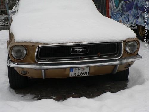 Tim Mälzers Mustang