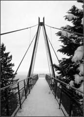 Cardada (Pecoroso77) Tags: winter bw snow neve inverno montagna montain cardada