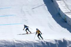 Para-Alpine Downhill