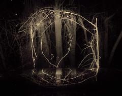 Woodland Portal (Sea Moon) Tags: door night sticks vines noir branches headlights spooky entry