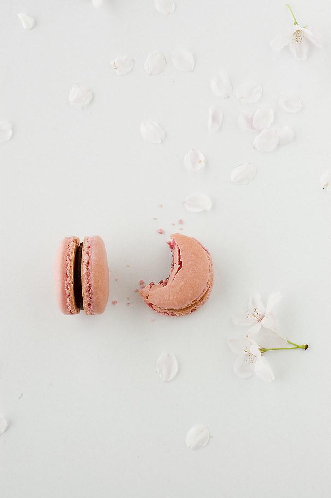 pink macarons - bite