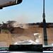 Between Kalabaydh and Tog Wajaale (Somaliland/Somalia) - Road conditions