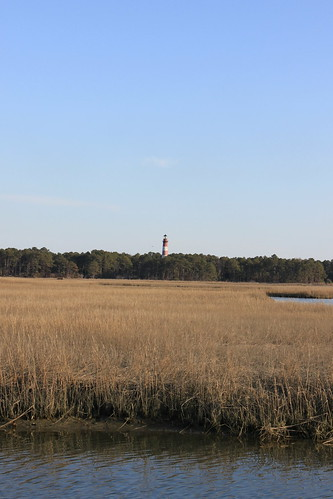 chincoteague island light house
