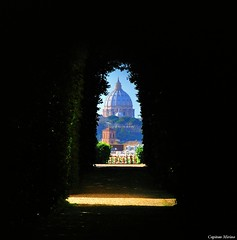 St Peter from the key hole (Capitan Mirino ( il Tartarughino )) Tags: italy roma church chiesa cupola dome keyhole sanpietro lazio aventino bucodellaserratura sovranoordinemilitaredimalta piazzadeicavalieridimalta crazyheart 3bouncingballs