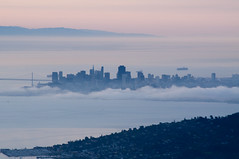 San Francisco Fog Photo