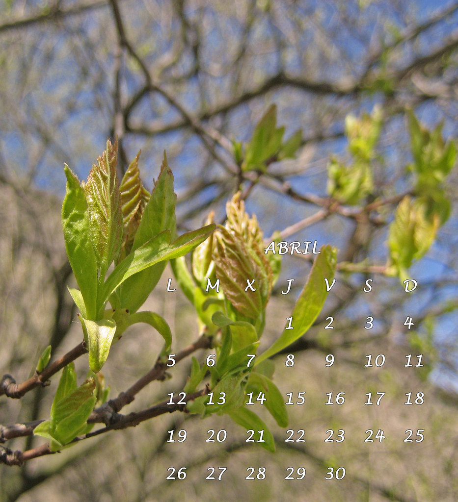 abril 5
