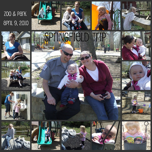 zooparkcollage