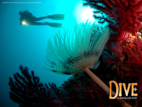 Dive The Medes Island Secret