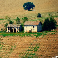 Rural House (Osvaldo_Zoom) Tags: trees house green yellow rural landscape nikon fields agriculture marche macerata d80 montesangiusto