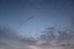 Kite (Yu-heng) Tags: kite singapore marinasouth marinabarrage