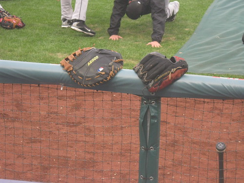 Florida Marlins Gloves