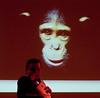 JIM CRONIN GALA DINNER 030410 MAD GRAHAM MACK 03_ (StudioVerrico) Tags: chimpanzee primate monkeyworld primates chimpanzees rescuecentre galadinner rescuecenter jimcronin primatesanctuary alisoncronin jimcroninmemorialdinner jimcroninmemorialfund jimcroninmemorialdinner2010 primatesanctuaries