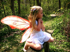Golden Child (intocollidingentropy) Tags: flowers blue red white girl grass leaves sparkles glitter forest woodland wings eyes sitting dress princess little sweet innocent adorable lips fairy tiny blonde grin braids storybook magical nymph tale