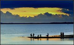 early mornin (bubuli2169) Tags: sunrise bestofmywinners