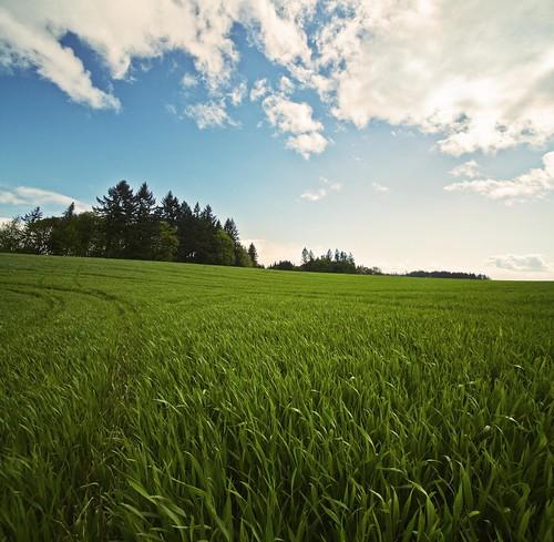 http://farm5.static.flickr.com/4020/4577293238_12494759fb.jpg