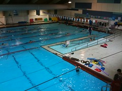 Pool at Marshall Center